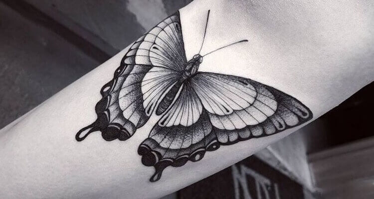 75 Butterfly Tattoo Ideas and Designs