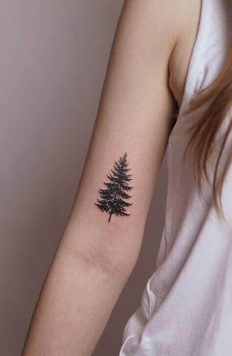 Pine Tree ink