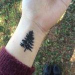 Small Pine Tree Tattoo Ideas
