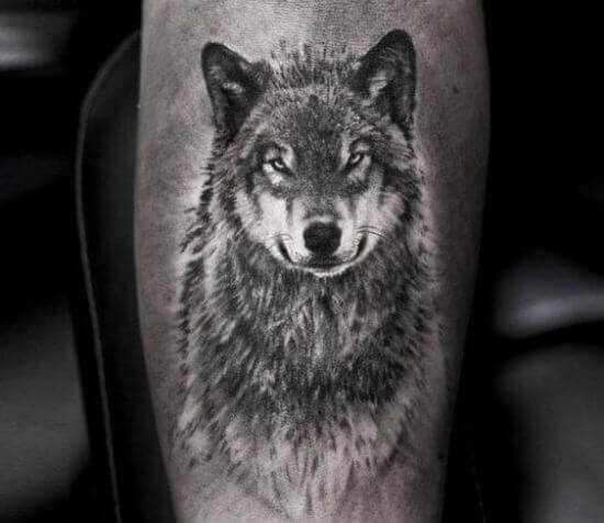 Gray Wolf Tattoo designs