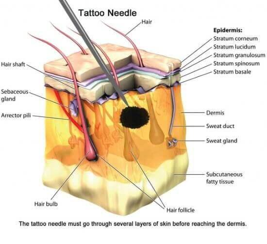 tattoo depth skin figure