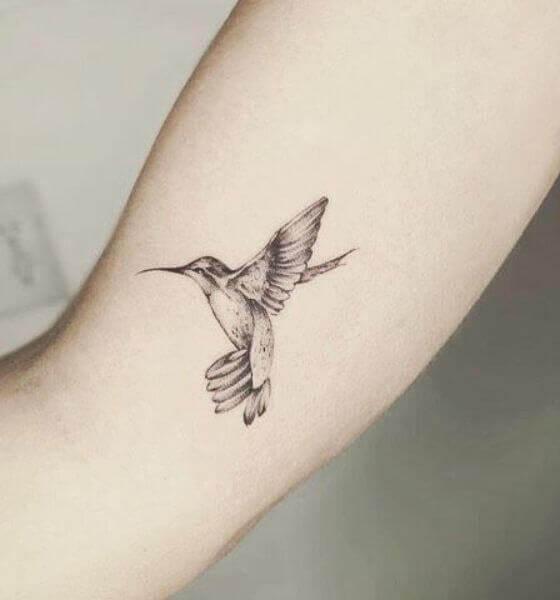 Best Hummingbird Tattoo Black and White
