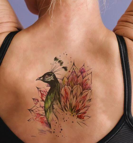 Amazing Peacock Tattoo on Back