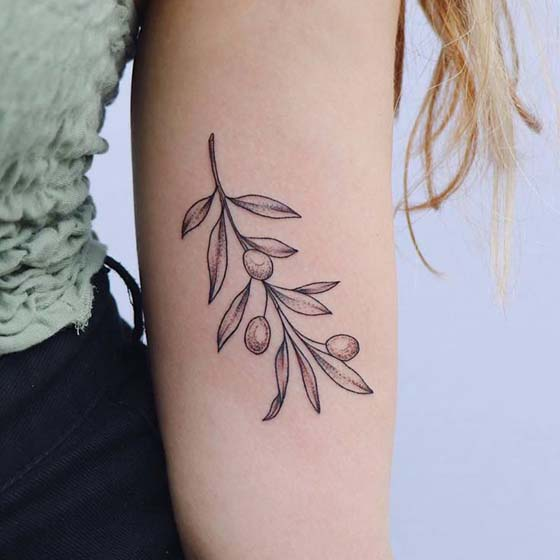 Olive Branch Tattoo - Symbol of Hope Tattoo
