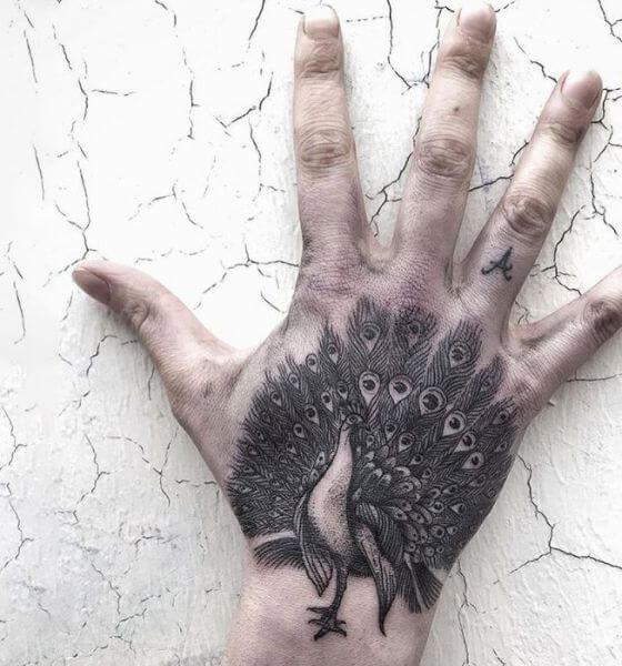 Peacock Tattoo Ideas on Hand
