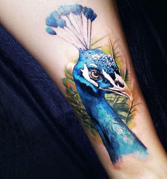 Stunning Peacock Tattoo Design for Men and Women