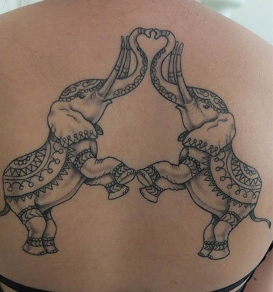 Two Elephant Making Heart with Their Trunk Up